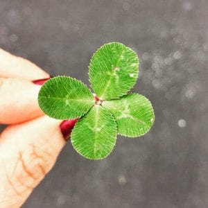 4-leaved green clover