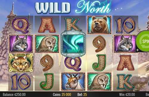 Wild North Slot Review Play'n GO Screenshot