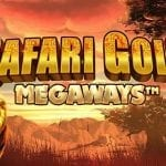 Safari Gold slot