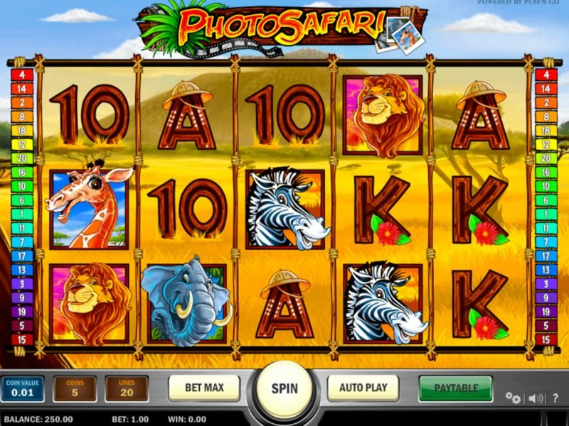 photo safari slots